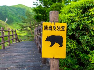 japan:-rock-music-to-protect-inhabitants-from-bears
