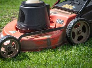 Photo of VIDEO.  Unusual: he beats a world speed record … on a lawn mower